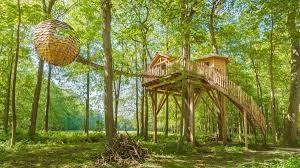 cabane des grands chênes
