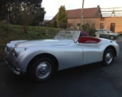 Jaguar aristocat XK 140